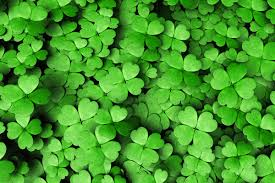 4 Ways to Do St. Patrick's Day Right